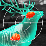 Wild Hunt Sport Hunting Games Hunter & Shooter 3D MOD APK android 1.450